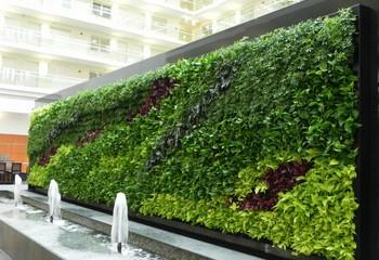 габаритная зеленая стена