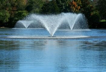 садовый фонтан плавающий