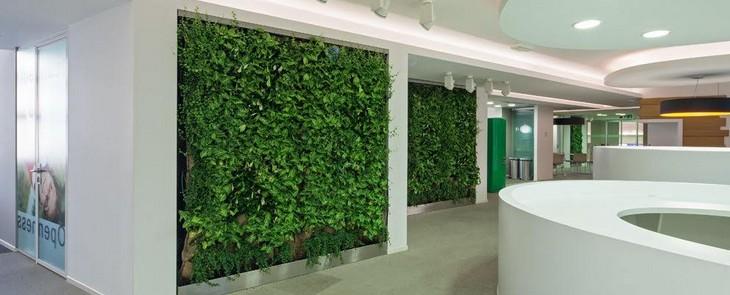 вертикальное озеленение в офисном центре