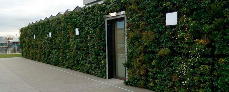 массивная зеленая стена