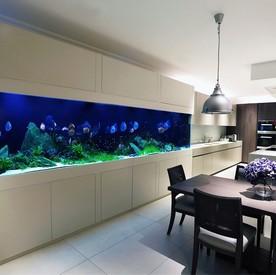 Морской аквариум в гостиной