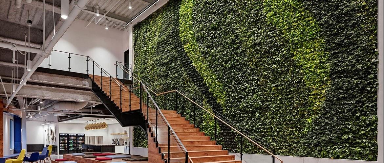 вертикальное озеленение на стене
