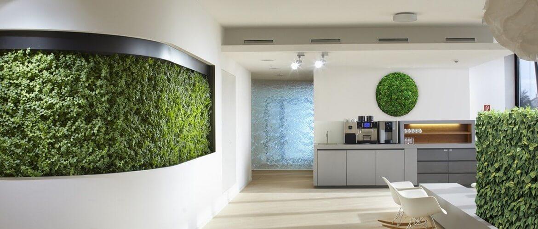 интерьерный вертикальный сад