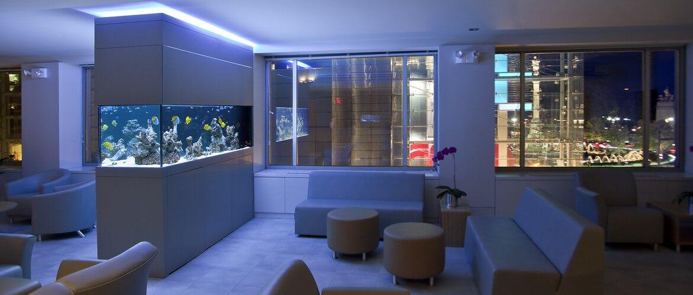 превдоморской аквариум с оформлением